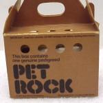 Pet rock - pudełko