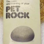 pet rock - intruckcja obsługi