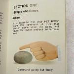 pet rock - wycinek instrukcji obsługi